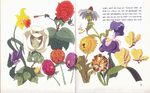 German bluchert verlag book flowers 640