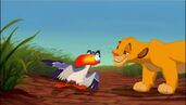 The lion king simba and zazu grin by dramaplayer-d50snij