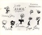 Model sheet 350-8018 flower suggestions morning glory, violets, dandelion, tiger lilies blog