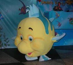 Flounderphoto2