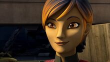 Sabine Smiles
