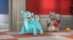 Scrambled-Pets-24