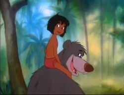 Mowgli Baloo JC