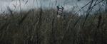 Maleficent-(2014)-276