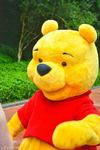 Winnie The Pooh walks