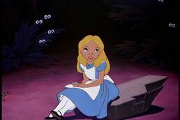 Alice503