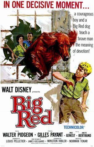 File:Big Red.jpg