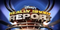 Disney's Really Short Report