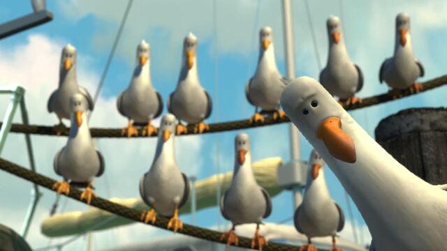 File:Nemo-Seagulls .jpg