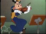Violincow