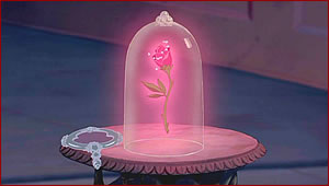 File:The Enchanted Rose.jpg