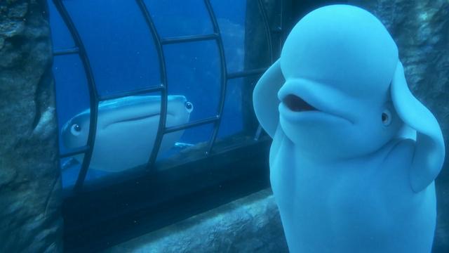 Bailey le beluga en train de chanter dans Finding Dory