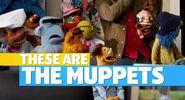 Muppets2011Trailer01-1920 07