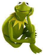 Kermit-Sitting