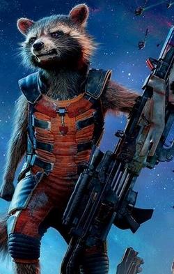 Rocket Raccoon (Marvel Cinematic Universe) | Disney Wiki ...