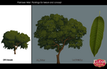 EOA tree concept 2