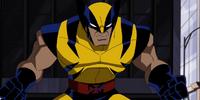 Wolverine/Gallery