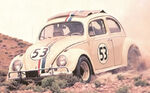 Herbie coming down hill
