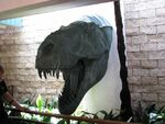 Dinosaurs0021head