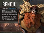 The Bendu Profile