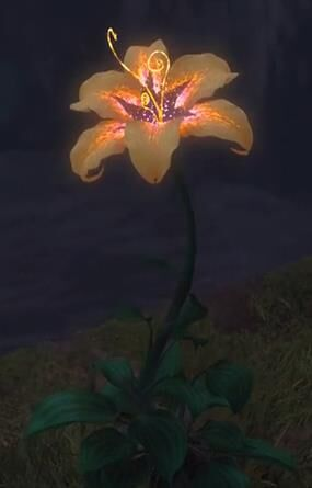 Magical Golden Flower | Disney Wiki | Fandom powered by Wikia
