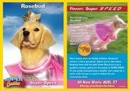 Rosebud Card