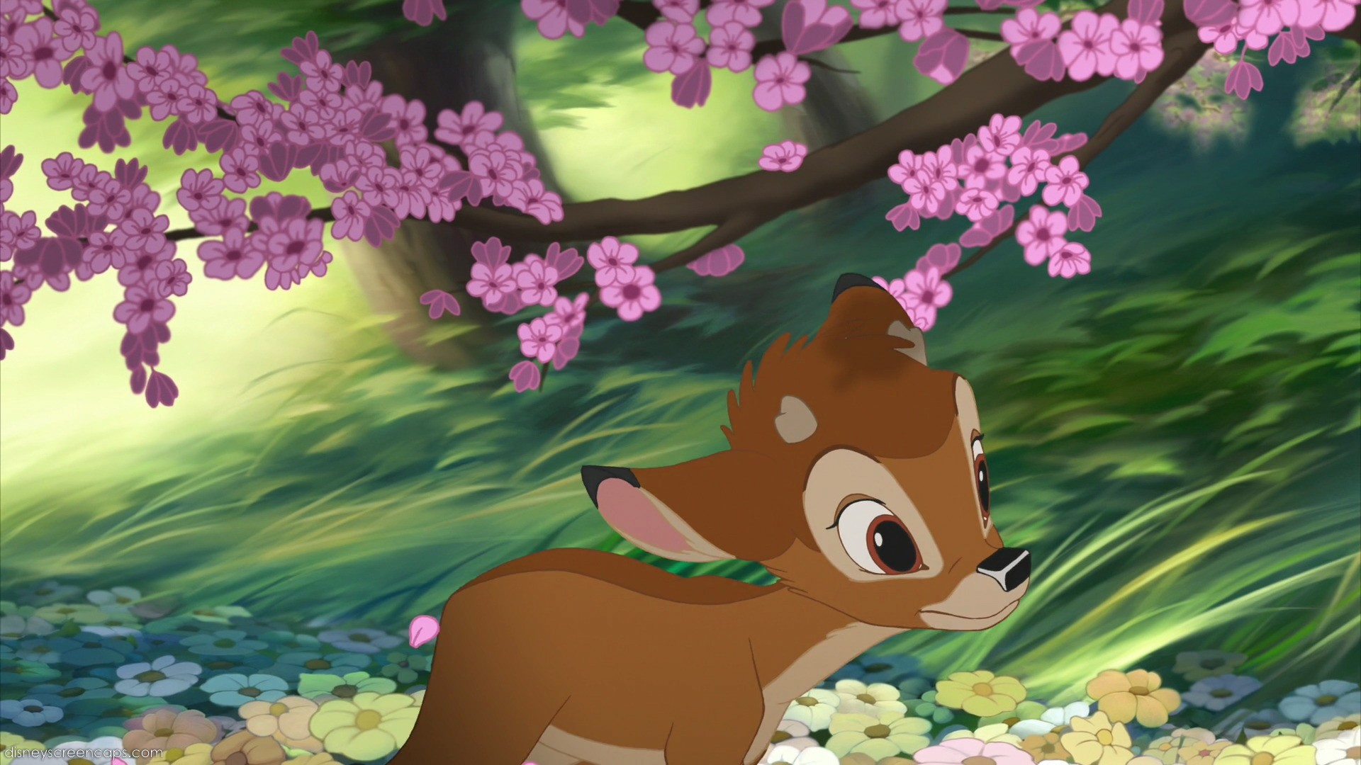Bambi II  Disney Wiki  FANDOM powered by Wikia