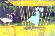 Mary Poppins Chimpanzoo (5)