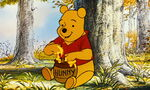 Winnie the Pooh really loves to enjoy honey