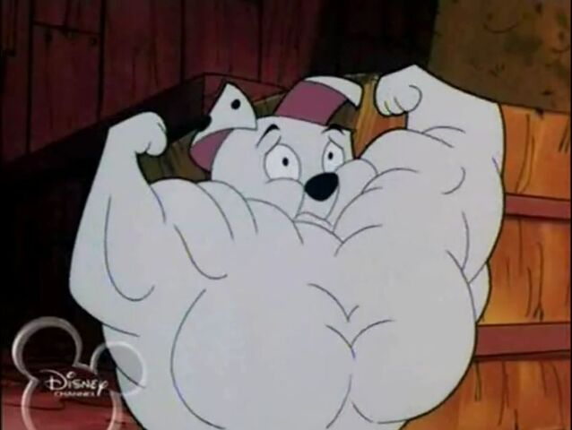 File:Muscular Rolly.JPG