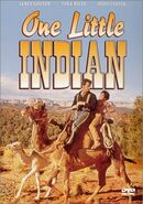 One Little Indian DVD Cover