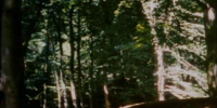 Sherwood Forest (1952 location)