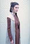 Princess Leia 12