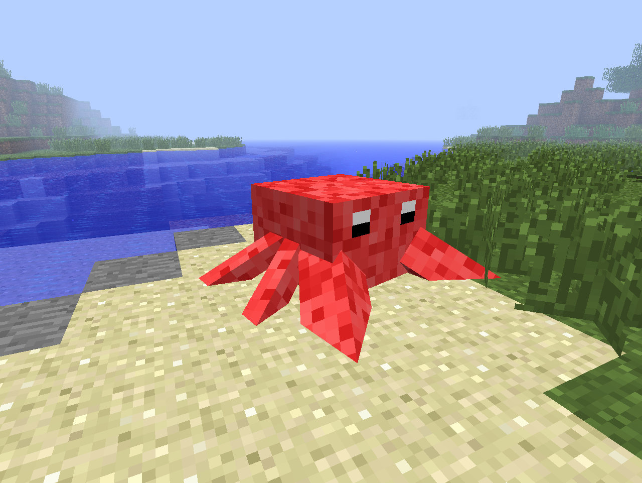 King Crab Images a King Crab on a Beach
