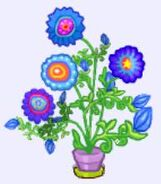 Garden potted circus flower