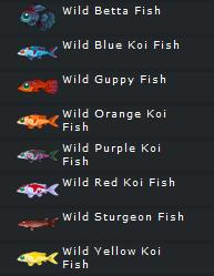 Fish critters