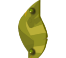 Trophy Kimbo Shield