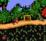 JungleHijinxsColorDiddyRambiCrate