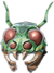 Helm chitinous