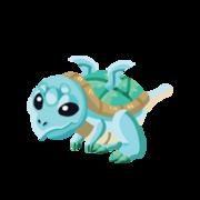 Turtle Juvenile