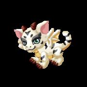 White Bengal Baby