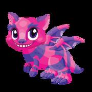 Cheshire Juvenile