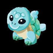 Turtle Baby
