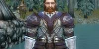 Dwarven Medium armor set