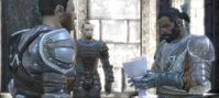 Grey warden ceremony