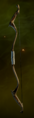 Crafted Recurved Longbow.png