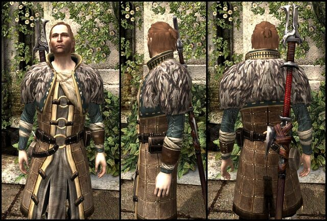 File:DA2 Renegade's Coat - 1 - Reg - Anders companion armor.jpg