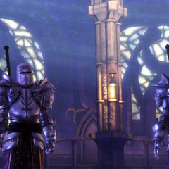 Cullen and another templar witness the Mage Warden's Harrowing