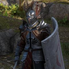 Templar Defender in <i>Dragon Age: Inquisition</i>