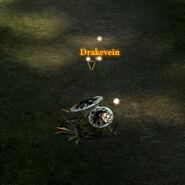 Drakevein